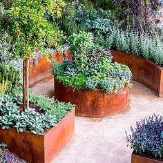 10 Ideas for a Tiny Edible Garden