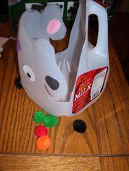 Dog's Colorful Day Hokey Pokey