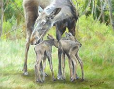 Fine Art by Brenda L. Capturing the joy of life's precious moments. Joy Of Life, Precious Moments, Oil On Canvas, Moose Art, Original Paintings, United States, In This Moment, Fine Art, Animals