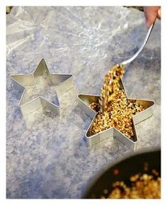 Star-shaped bird feeders to make with the kids and then decorate our trees. - Click image to find more DIY & Crafts Pinterest pins