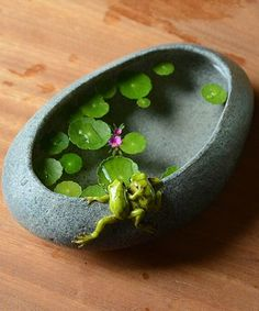 Look at this Frogs on Stone Flower Pot on today! Look at this Frogs on Stone Flower Pot on today! Rock Crafts, Resin Crafts, Resin Art, Indoor Water Garden, Clay Projects, Pebble Art, Stone Art, Stone Painting, Painted Rocks