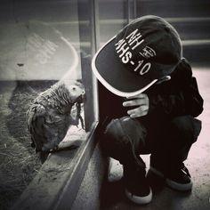 Parrot#egzotarium#wiktor