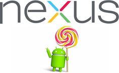 Nexus 5 2015 Featuring Lollipop Successor to be Released?
