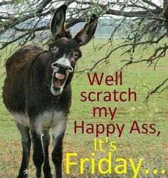 Friday Memes because by the end of the week, we all need a good LOL! Check out these funny memes about Friday to share with friends and co-workers! Friday Morning Quotes, Friday Quotes Humor, Morning Wishes Quotes, Good Morning Friday, Funny Friday Memes, Morning Humor, Morning Sayings, Funny Memes, Happy Morning