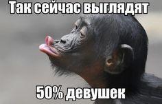 Анекдоты дня в ассортименте! / Приколы