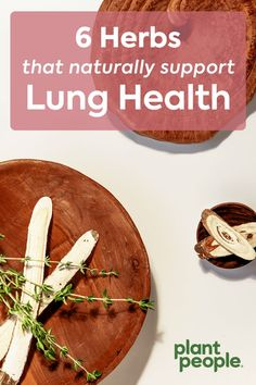 Which herbs are good for your lungs? In this short guide, we'll go over 5 lung support herbs, along with the best ways to incorporate them into your daily routine. Whether you incorporate these organic ingredients in food or choose to detox your lungs with a supplement for lung health, these lung cleansing herbs are a great start. Herbs For Health, Healthy Herbs, Natural Health Remedies, Herbal Remedies, Holistic Remedies, Natural Medicine, Herbal Medicine, Health And Nutrition, Health And Wellness