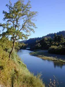 Russian River Valley - Sonoma County #wine