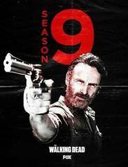 Walking Dead Saison 9 Vf : walking, saison, Serie, Walking, Saison, Streaming, Saison,, Dead,
