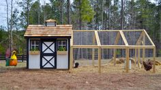 "4'6"" high at peek, 12' long coop run  Backyard Chicken Product: Chicken Coops - Wyandotte Chicken Coop (12 chickens) - from My Pet Chicken"