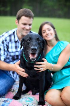 I love the idea of including the dogs in engagement photos and I like that this pic still sort of shows off the engagement ring.