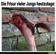 Die Frisur vieler Jungs heutzutage..   DEBESTE.de, Lustige Bilder, Sprüche, Witze und Videos