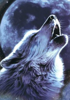 new hand dmade wolf diamond painting kits full drill square diamond embroidery diy diamond drawing home decoration Beautiful Wolves, Animals Beautiful, Cute Animals, Wolf Images, Wolf Pictures, Tier Wolf, Native American Animals, American Indians, Wolf Artwork