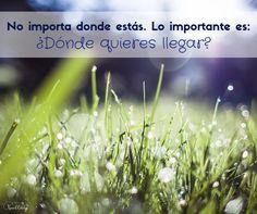 Si mirar a tu alrededor te agobia o te hace perder la esperanza... Pon el foco en lo importante: ¿Dónde quieres llegar?  | www.raquelcabalga.com |