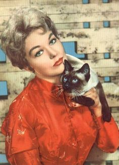 kim novak with Pyewackett from Bell Book and Candle. - Siamese Cat - Ideas of Siamese Cat - kim novak with Pyewackett from Bell Book and Candle. The post kim novak with Pyewackett from Bell Book and Candle. appeared first on Cat Gig. Siamese Cats, Cats And Kittens, Big Cats, Crazy Cat Lady, Crazy Cats, Celebrities With Cats, Celebs, Son Chat, Kim Novak