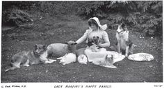 Lady Marjory's happy family, arranged peaceably on the lawn: Two collies, a lamb, two bunnies, a Japanese chin, and maybe two Yorkies? 1901, The Country Life Illustrated.