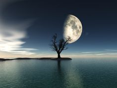 Rising Moon by Alexandra Kleist on 500px