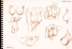 A helpful fuck-ton of boob references. Note that since this contains long images that are currently fuzzy (because tumblr just doesn't want to display 'em clearly), you gotta reverse-image search 'em in google. Just because it's a little extra work doesn't mean you oughtn't do it; the large image on the right is totally worth the effort for female anatomy, and the one of the left is also helpful with bra things. They're all quite helpful. [From ...