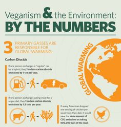 the vegan diet is unhealthy