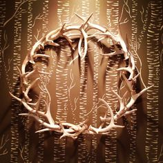 Antler wreath ... looking for something to do with the pile of antlers in the corner of the living room.