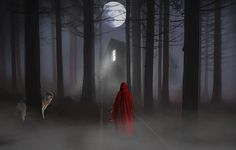 Ilustração gratis: Lua Cheia, Floresta, Mulher, Lobo - Imagem gratis no Pixabay - 1654539