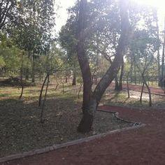 Pista El Sope - Bosque de Chapultepec 2 - Miguel Hidalgo, DF