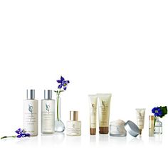 Nutrition for your skin. Guaranteed satisfaction or your money back. Shaklee. Enfuselle.