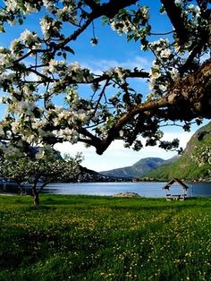 Sogndal, Norge..... Its a dream to remember zi was there once....