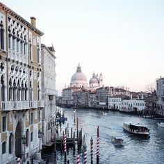 """Venice with @studio_neon @ginnybranch…"" via local_milk on instagram"