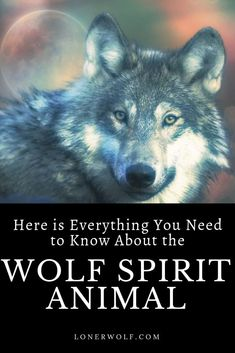 "✨💯Free❤Spirit💯✨""What is my spirit animal?"" you may wonder. If you feel drawn to the wolf, pay attention. This could be a sign that the wolf is trying to guide you. Whats Your Spirit Animal, Wolf Spirit Animal, Animal Spirit Guides, Animal Meanings, Animal Symbolism, Wolf Meaning, Lone Wolf Quotes, Animal Quiz, Spiritual Animal"