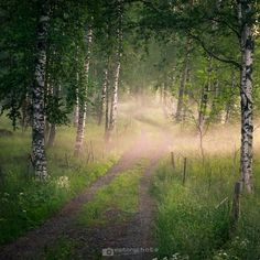 Cottage road (summer night) - Shoot in Finland, Mäntyharju. Night Photography, Nature Photography, Feel Good Pictures, Nature Witch, Night Forest, Summer Feeling, Summer Nights, Finland, Mother Nature
