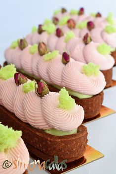 Tarte cu ciocolata si fistic Desserts, Food, Pie, Tailgate Desserts, Postres, Deserts, Essen, Dessert, Yemek