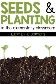 Teaching students about seeds & planting is a fun unit to teach in the spring. This unit includes a planting observation journal what do plants need parts of a plant ways seeds move photosynthesis & types of soil. Teaching Writing, Student Teaching, Teaching Kids, Growth Mindset Book, Growth Mindset Activities, Outdoor Learning Spaces, Science For Kids, Stem Science, Parts Of A Plant