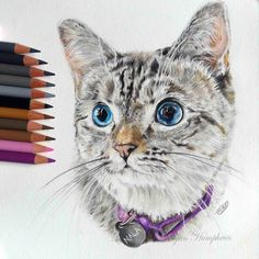 drawing by self-taught artist Megan Humphries.