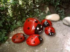 ladybug painted rocks-a bit more potential for whimsy here-wire legs, googly eyes etc. oops paint combined with ripped open bags of rock in garden and give away for free in garden during the season