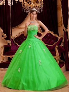 aa6c449a8a3 Spring Green Princess Strapless Appliques Tulle 2013 Sweet Sixteen Dresses  Sweet Sixteen Dresses