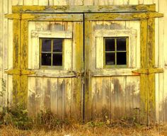sunshine of the years, glowing through her pained shudders, dried grasses afoot. #yellow, #barn, #windows