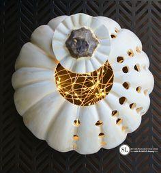 Velvet Pumpkins, White Pumpkins, Painted Pumpkins, Fall Pumpkins, Halloween Pumpkins, Diy Pumpkin, Pumpkin Crafts, Fall Crafts, Pumpkin Carving