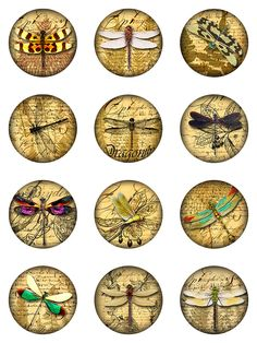 Dragonflies Ephemera Ferns Digital Collage Sheet 2 inch