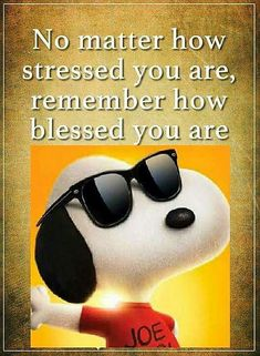 Too blessed to be stressed (Snoopy) Charlie Brown Quotes, Charlie Brown And Snoopy, Peanuts Quotes, Snoopy Quotes, Snoopy Love, Snoopy And Woodstock, Guter Rat, Snoopy Pictures, Snoopy Images