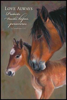 1 Corinthians (wish I could give credit to this artist. Scripture Verses, Bible Scriptures, Bible Quotes, Qoutes, Inspirational Horse Quotes, Country Girl Quotes, Horse Pictures, Horse Love, Spiritual Inspiration