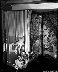 Alice's Adventures in Wonderland – Abelardo Morell Alice Book, Alice In Wonderland Book, Adventures In Wonderland, Still Life Photography, Book Photography, Photography Topics, School Photography, Still Life Artists, Museum Art Gallery
