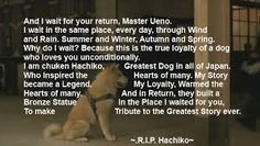 true story of Hachiko Dog Stories, True Stories, Hachi A Dogs Tale, Dog Love, Puppy Love, A Dog's Tale, I Wait For You, Hachiko, Japanese Dogs