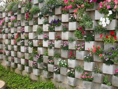2. Use Cinder Blocks To Plant Flowers Inside  You can create a whole garden wall using cinder blocks. Arrange them in some creative way and plant some colorful flowers inside them. When the flowers grow you will have the most beautiful and colorful vertical garden in the world.
