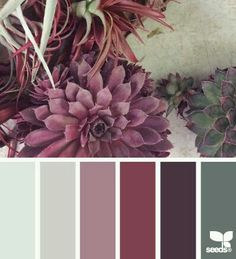 Bedroom Ideas Color Schemes Inspiration Design Seeds Ideas For 2019 Colour Pallette, Colour Schemes, Color Patterns, Color Combinations, Winter Colour Palette, Colour Chart, Design Seeds, Decoration Palette, Color Balance