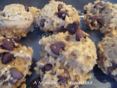A Minneapolis Homestead: Easy Healthy Oatmeal Chocolate Chip Breakfast Cookies Recipe (No Flour Sugar or Butter)