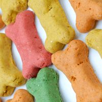 Sugar Cookies made to look like Dog Treats!
