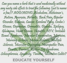 Marijuana , good to know Cerebral Palsy, Crohns, Bipolar Disorder, Anorexia, Epilepsy, The More You Know, Alzheimers, Heart Disease, The Secret