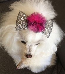 #Glitz and #Glamor. #dog hairbow!