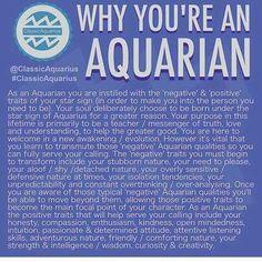 Aquarius in business Aquarius Daily, Aquarius Traits, Aquarius Love, Aquarius Quotes, Aquarius Woman, Age Of Aquarius, Capricorn And Aquarius, Zodiac Signs Aquarius, My Zodiac Sign