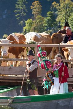 The Alps + A Lake + Some Cows = A Happy Fall Day!